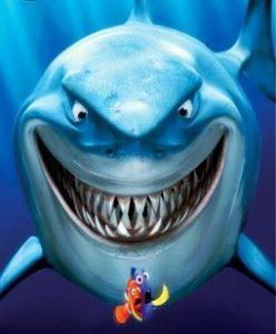 rechinul